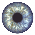 Eye Specialist in Garstang
